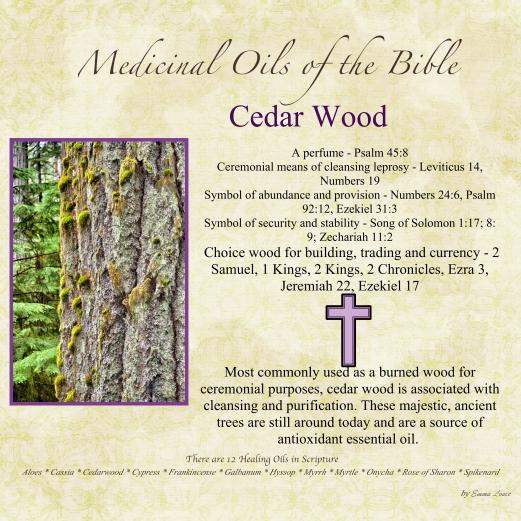 Cedarwood-001