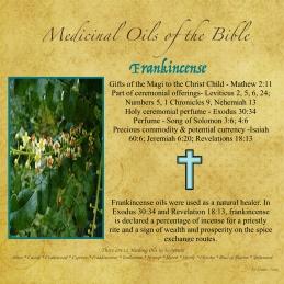 Frankincense-001