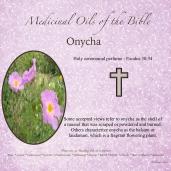 Onycha-001